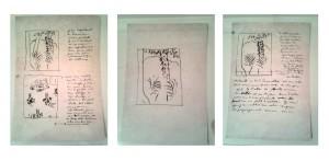 Matisse sketchbook