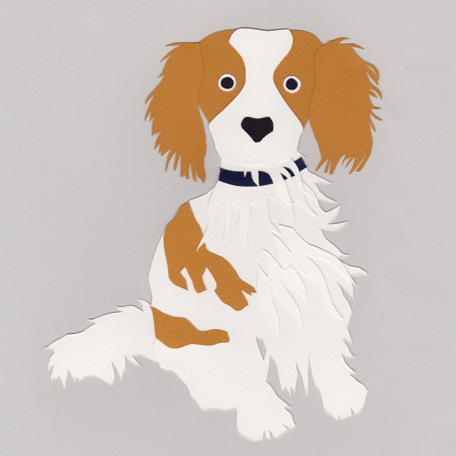 Isobel Barber custom papercut pet portrait Spaniel dog