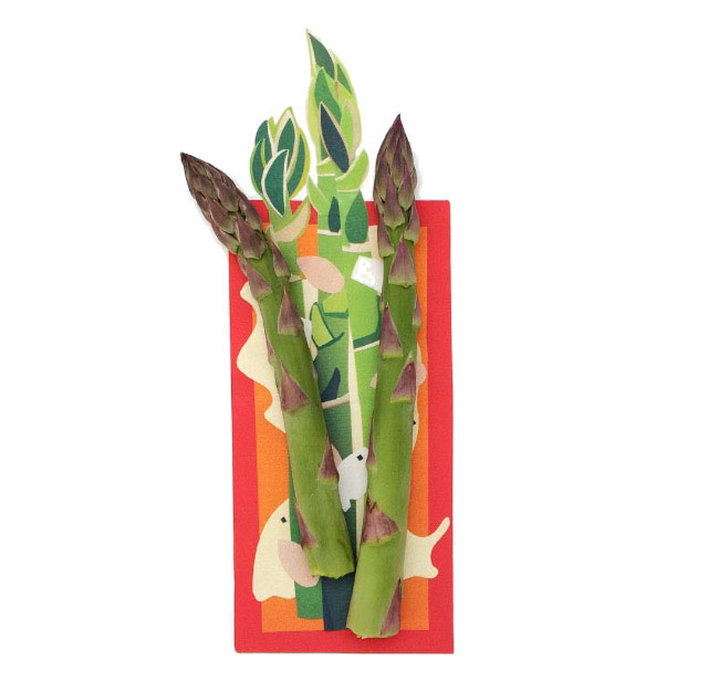 isobel barber food illustration asparagus